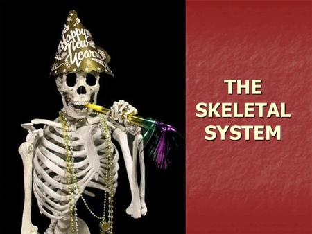 THE SKELETAL SYSTEM. What the Skeletal System Does... 5 major functions: 5 major functions: Shape and support Shape and support Movement Movement Protects.