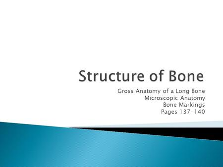 Structure of Bone Gross Anatomy of a Long Bone Microscopic Anatomy