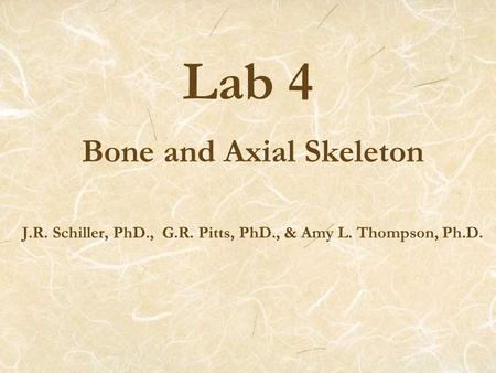 Lab 4 Bone and Axial Skeleton J.R. Schiller, PhD., G.R. Pitts, PhD., & Amy L. Thompson, Ph.D.