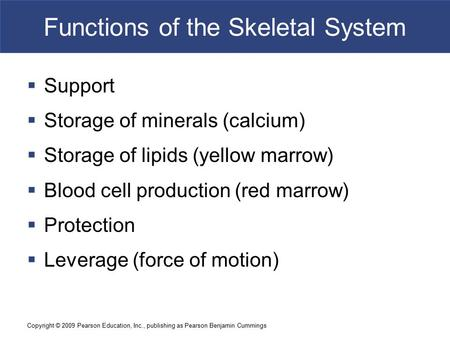 Copyright © 2009 Pearson Education, Inc., publishing as Pearson Benjamin Cummings Functions of the Skeletal System  Support  Storage of minerals (calcium)