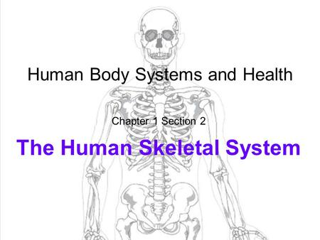1 Human Body Systems and Health Chapter 1 Section 2 The Human Skeletal System.