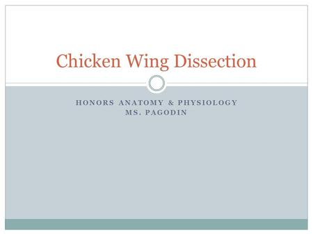 HONORS ANATOMY & PHYSIOLOGY MS. PAGODIN Chicken Wing Dissection.