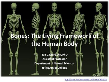 Bones: The Living Framework of the Human Body Eva L. Murdoch, PhD Assistant Professor Department of Natural Sciences Joliet Junior College