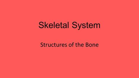 Skeletal System Structures of the Bone. Major Organs Bone Marrow Compact Bone Cartilage Tendons.