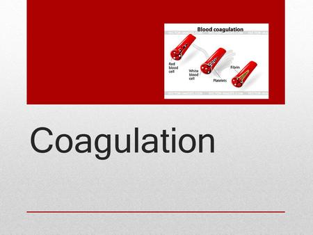 Coagulation.