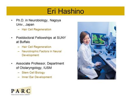 Eri Hashino Ph.D. in Neurobiology, Nagoya Univ., Japan –Hair Cell Regeneration Postdoctoral Fellowships at SUNY at Buffalo –Hair Cell Regeneration –Neurotrophic.