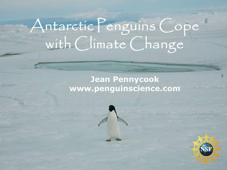 Jean Pennycook www.penguinscience.com Antarctic Penguins Cope with Climate Change.