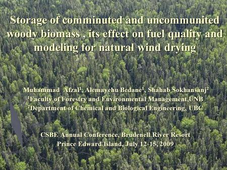 1 Storage of comminuted and uncommunited woody biomass, its effect on fuel quality and modeling for natural wind drying Muhammad Afzal 1, Alemayehu Bedane.