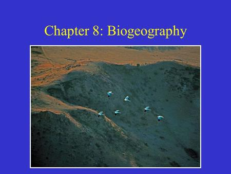Chapter 8: Biogeography