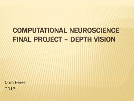 COMPUTATIONAL NEUROSCIENCE FINAL PROJECT – DEPTH VISION Omri Perez 2013.