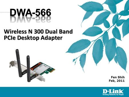 Fen Shih Feb, 2011 Wireless N 300 Dual Band PCIe Desktop Adapter.