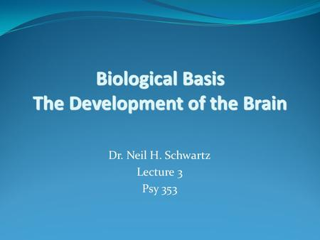 Biological Basis The Development of the Brain Dr. Neil H. Schwartz Lecture 3 Psy 353.