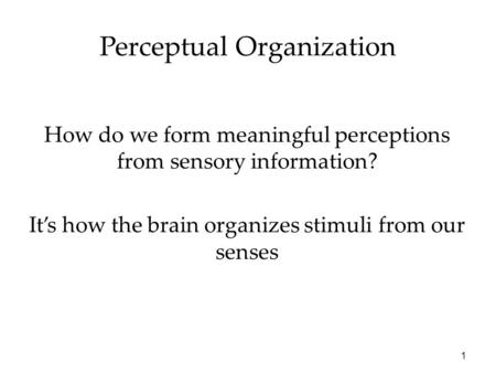 1 Perceptual Organization How do we form meaningful perceptions from sensory information? It's how the brain organizes stimuli from our senses.