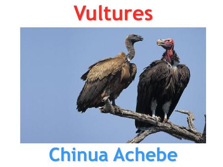 vultures by chinua achebe A straightforward worksheet with q & a, followed by five homework tasks on the poem.