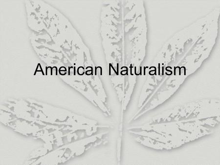American Naturalism. I. Introduction 1. Origin (1) Industrialism: create a large group of very poor people; live in slums and cannot control their lives;