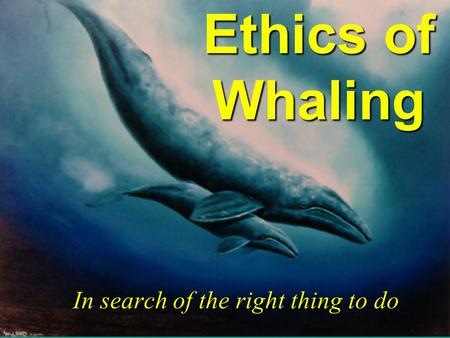 Ethics of Whaling In search of the right thing to do.