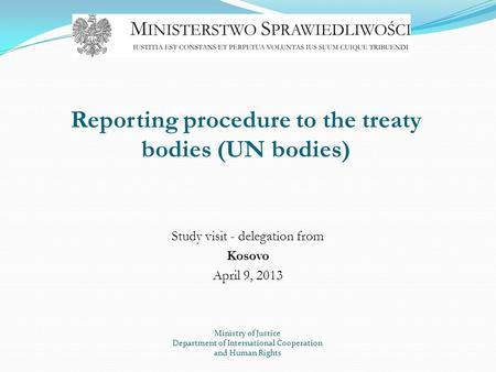 Reporting procedure to the treaty bodies (UN bodies)