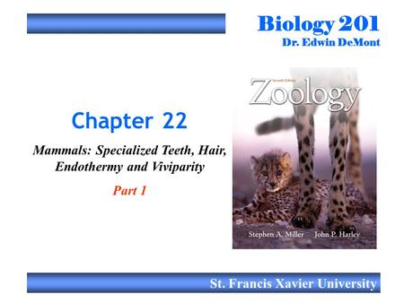 Biology 201 Dr. Edwin DeMont St. Francis Xavier University Chapter 22 Mammals: Specialized Teeth, Hair, Endothermy and Viviparity Part 1.