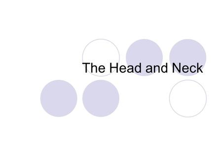 The Head and Neck.