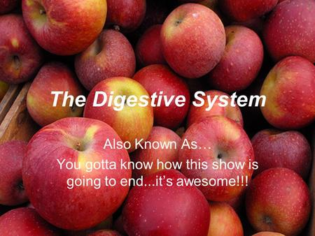 The Digestive System Also Known As… You gotta know how this show is going to end...it's awesome!!!