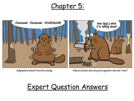 Chapter 5: Expert Question Answers. 1.Fossils - shows how some species have changed over time. 2.Homologous Structures - Body parts are similar in related.