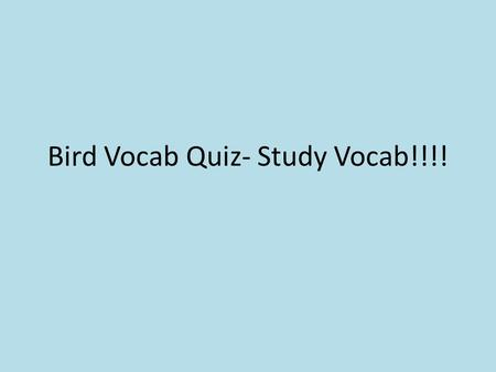 Bird Vocab Quiz- Study Vocab!!!!