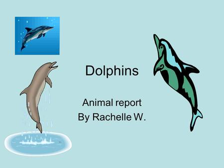 Dolphins Animal report By Rachelle W.. Controlling Body Temperature Dolphins use their blubber to control their body temperature.