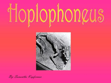 By: Samantha Kupferman. The Hoplophoneus would have been the size of a leopard. They had shared an almost identical structure with the SMILODON.  Short.