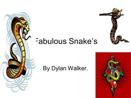 Fabulous Snake's By Dylan Walker.. Controlling Body Temperature. Snakes are ectothermic ( that mean's cold blooded ) And Snake's scale's help it's body.