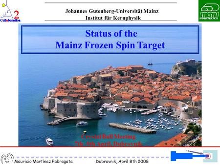 Mauricio Martínez Fabregate Dubrovnik, April 8th 2008 Crystal Ball Meeting 7th -9th April, Dubrovnik Status of the Mainz Frozen Spin Target Institut für.