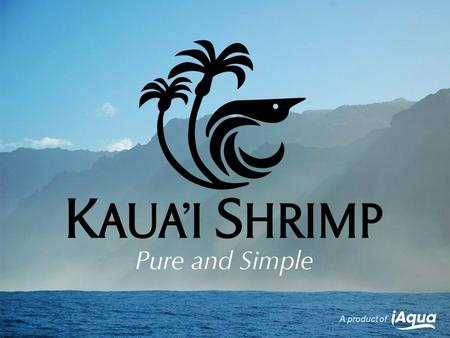 A product of. In this world of complexity and substitutes, Kauai Shrimp thrive on the purity and simplicity of nature. A product of 2 Slide.