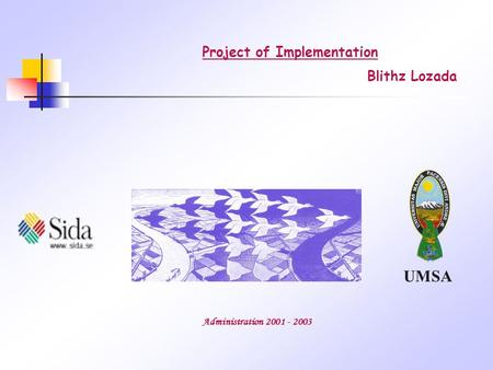 UMSA Project of Implementation Administration 2001 - 2003 Blithz Lozada.