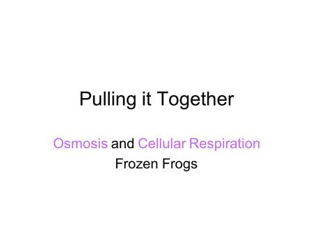 Pulling it Together Osmosis and Cellular Respiration Frozen Frogs.
