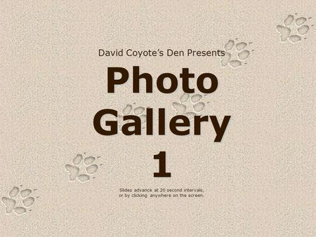 David Coyote's Den Presents Photo Gallery 1 Slides advance at 20 second intervals, or by clicking anywhere on the screen.
