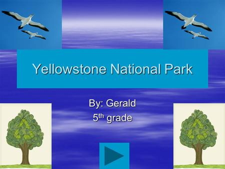 Yellowstone National Park By: Gerald 5 th grade Main Menu Facts: history & culture Nature & Science Things to do Facts: General Facts: Geology Facts: