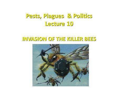 Pests, Plagues & Politics Lecture 10 INVASION OF THE KILLER BEES.