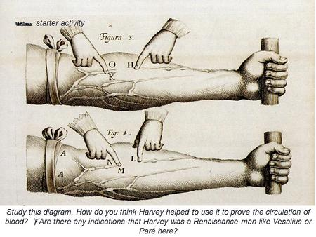  starter activity Study this diagram. How do you think Harvey helped to use it to prove the circulation of blood?  Are there any indications that Harvey.