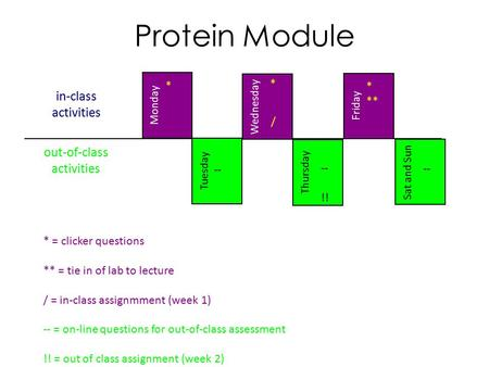 In-class activities Sat and Sun Tuesday Thursday Wednesday Friday Monday out-of-class activities Protein Module * ** * * -- !! -- / * = clicker questions.
