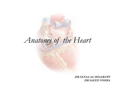 Anatomy of the Heart DR.SANAA AL-SHAARAWI DR.SAEED VOHRA.