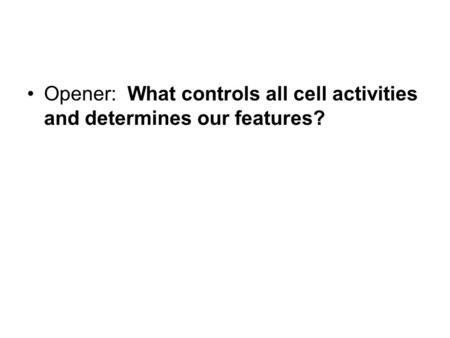 Opener:  What controls all cell activities and determines our features?