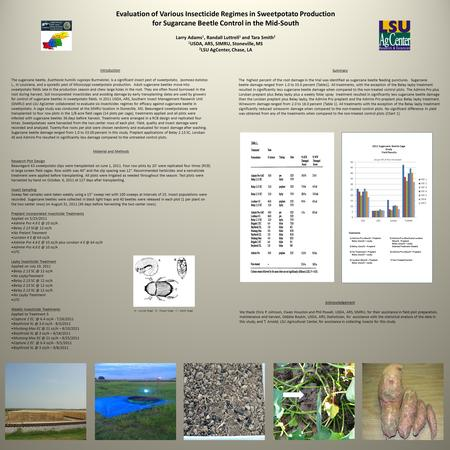 Evaluation of Various Insecticide Regimes in Sweetpotato Production for Sugarcane Beetle Control in the Mid-South Larry Adams 1, Randall Luttrell 1 and.