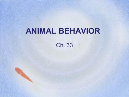 ANIMAL BEHAVIOR Ch. 33. Ethology The study of animal behavior.