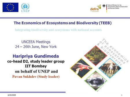 6/24/2009 1 The Economics of Ecosystems and Biodiversity (TEEB) UNCEEA Meetings 24 – 26th June, New York Haripriya Gundimeda co-head D2, study leader group.