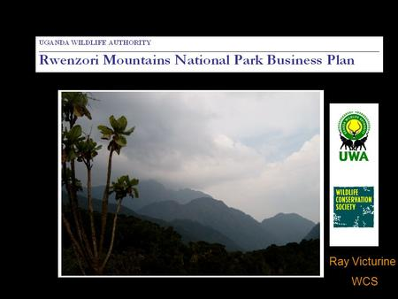 Ray Victurine WCS. Background Impetus: WCS/NPCA business planning presentation at VTH World Park Congress – Sustainable Finance Stream Draft business.