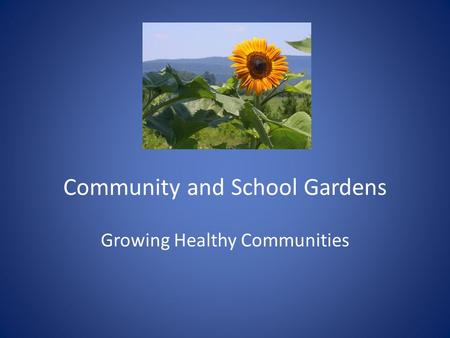 Community and School Gardens Growing Healthy Communities.