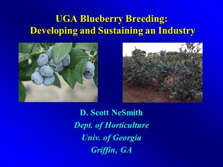 UGA Blueberry Breeding: Developing and Sustaining an Industry