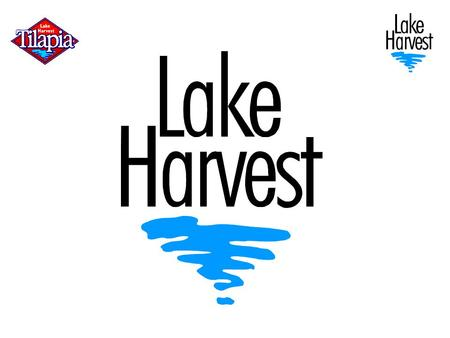 Lake Harvest Group History 92 – 94Pilot project 94 – 96Groundwork, permits, EIA, finance 97Lake Harvest established 97 – 992,000 tpa 99 Factory opens.