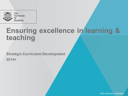 Ensuring excellence in learning & teaching © The University of Sheffield Strategic Curriculum Development 2014+