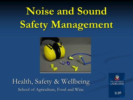 Noise and Sound Safety Management
