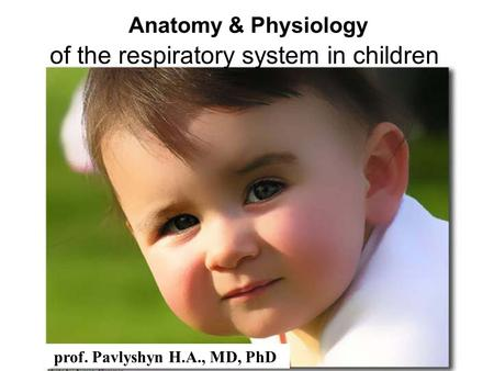 Anatomy & Physiology of the respiratory system in children prof. Pavlyshyn H.A., MD, PhD.